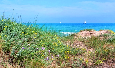 Playa del Saler_G